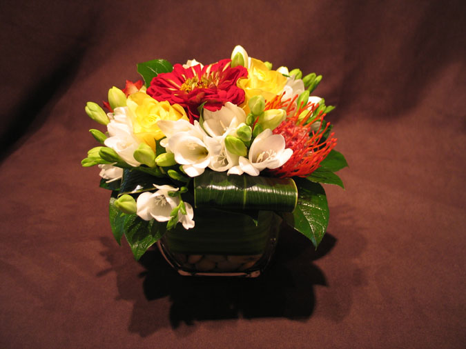 Celsia florist our gallery vancouver flowers in the